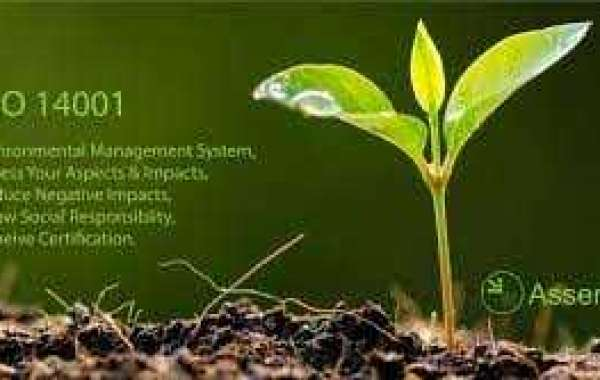 How to organize a training program for ISO 14001 Consultants in Kuwait?